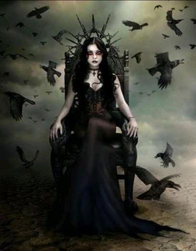 A Raven's Tale